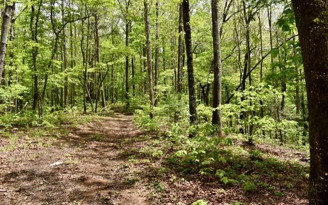 LT 10 Country Road, Talking Rock, GA 30536 (MLS #306844) :: Path & Post Real Estate