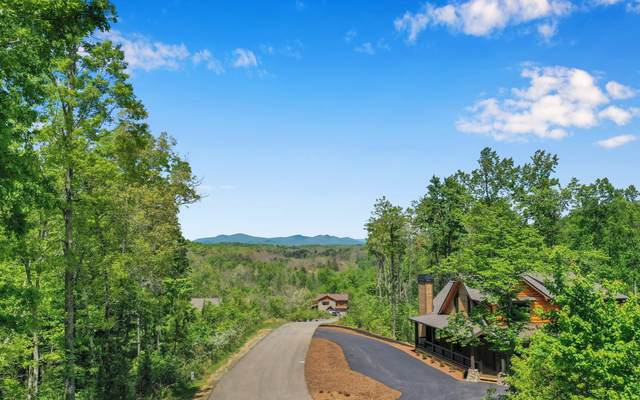 35&36 Staurolite Mountain, Blue Ridge, GA 30513 (MLS #306862) :: Path & Post Real Estate