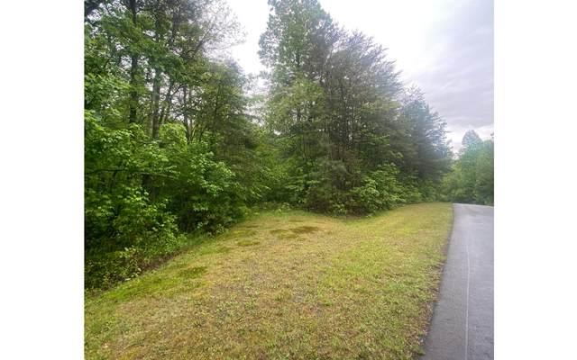 East Ridge Ln Lot 30, Ellijay, GA 30536 (MLS #306863) :: Path & Post Real Estate