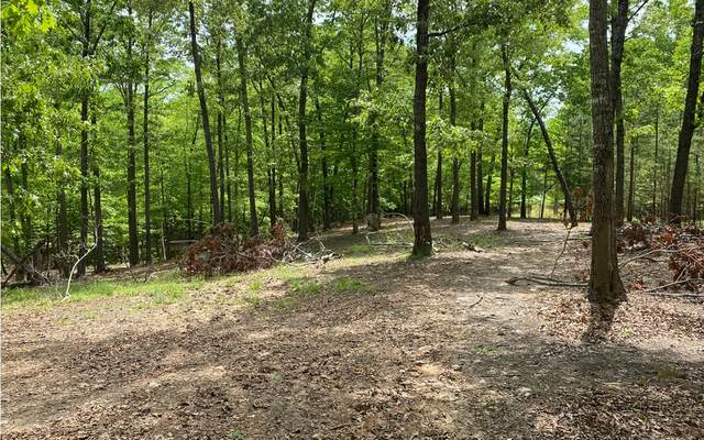 Fern Gulley Road, Blairsville, GA 30512 (MLS #306870) :: RE/MAX Town & Country