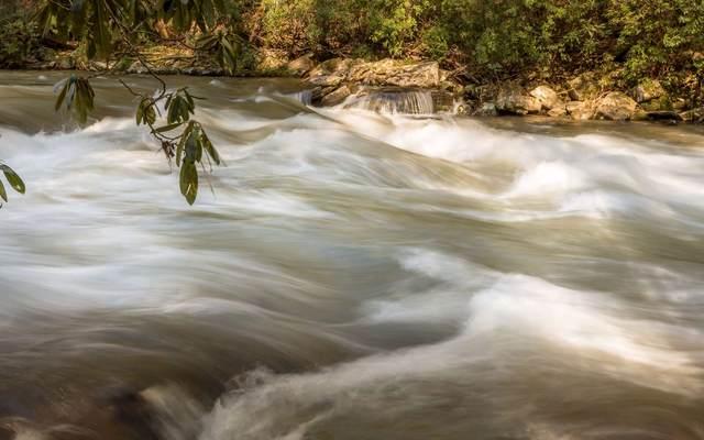LT187 High River/Canoe Pt, Ellijay, GA 30540 (MLS #306940) :: RE/MAX Town & Country