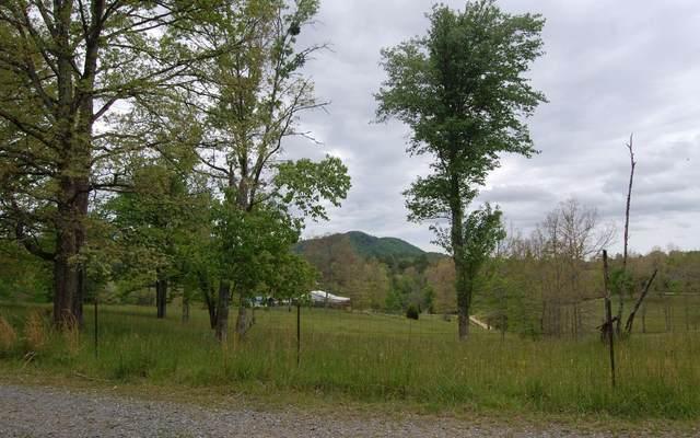 379 Ridge Road, Mineral Bluff, GA 30559 (MLS #306953) :: RE/MAX Town & Country