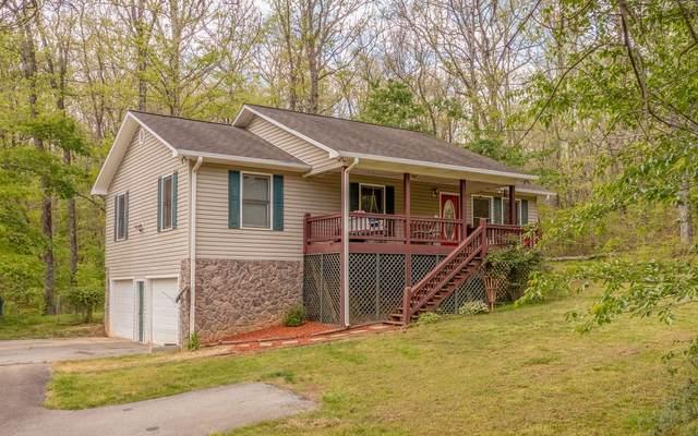 29 Mercury Lane, Mineral Bluff, GA 30559 (MLS #307007) :: RE/MAX Town & Country