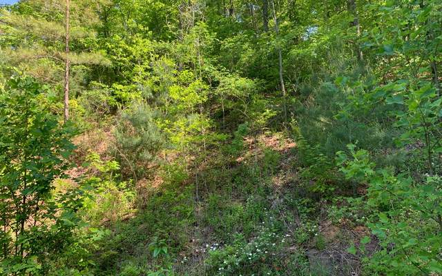 LT4A Trillium Heights, Hayesville, NC 28904 (MLS #307683) :: RE/MAX Town & Country