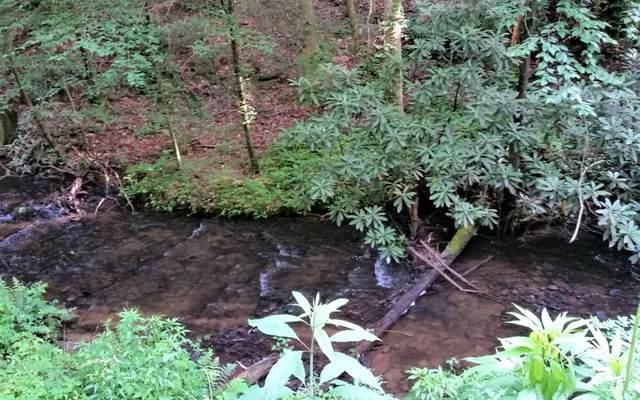 2+ AC Laurel Creek Trail, Cherry Log, GA 30522 (MLS #307863) :: RE/MAX Town & Country
