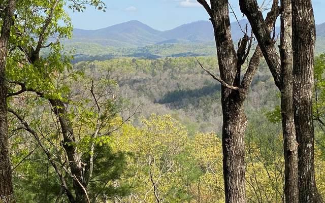 LT 4 Raven Ridge, Mineral Bluff, GA 30559 (MLS #307905) :: RE/MAX Town & Country