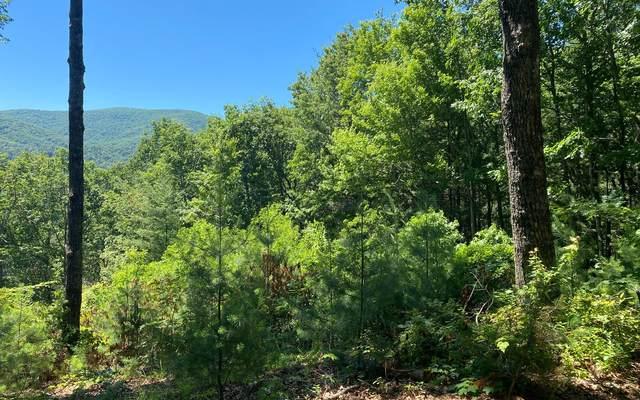 5 AC Big Creek, Cherry Log, GA 30536 (MLS #307912) :: RE/MAX Town & Country