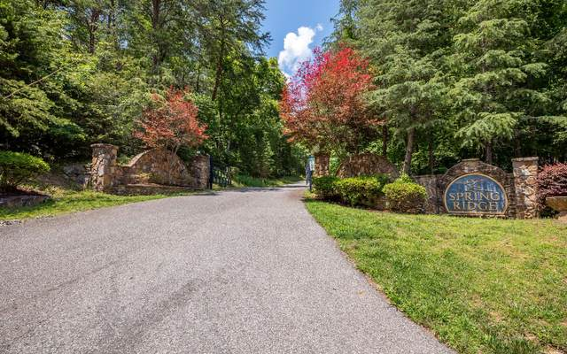 LT 4 Spring Ridge, Morganton, GA 30560 (MLS #307945) :: RE/MAX Town & Country
