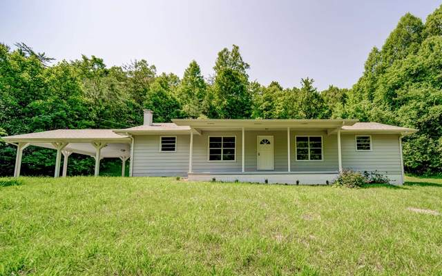 2140 River Road, Mineral Bluff, GA 30559 (MLS #307952) :: RE/MAX Town & Country