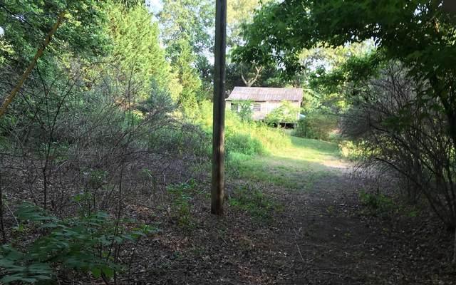 Blue Ridge, GA 30512 :: RE/MAX Town & Country