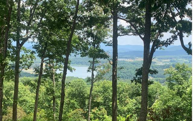 LT105 Highland Park, Blairsville, GA 30512 (MLS #308020) :: RE/MAX Town & Country
