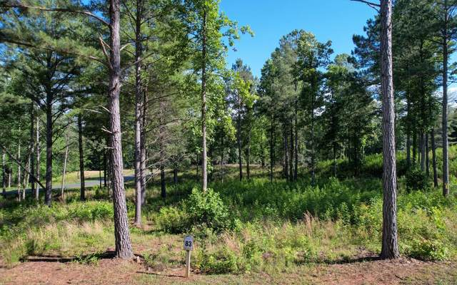 LT 83 Highland Park, Blairsville, GA 30512 (MLS #308114) :: Path & Post Real Estate