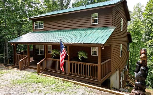 257 A J's Hollar, Blairsville, GA 30512 (MLS #308123) :: Path & Post Real Estate