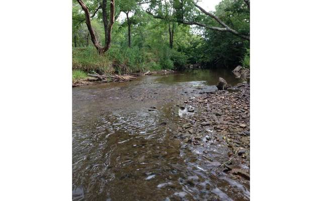 406 Coosa Creek Lane, Blairsville, GA 30512 (MLS #308146) :: Path & Post Real Estate