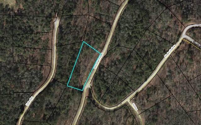LT 12 Mountain Ridge Drive, Rabun Gap, GA 30568 (MLS #308510) :: Path & Post Real Estate