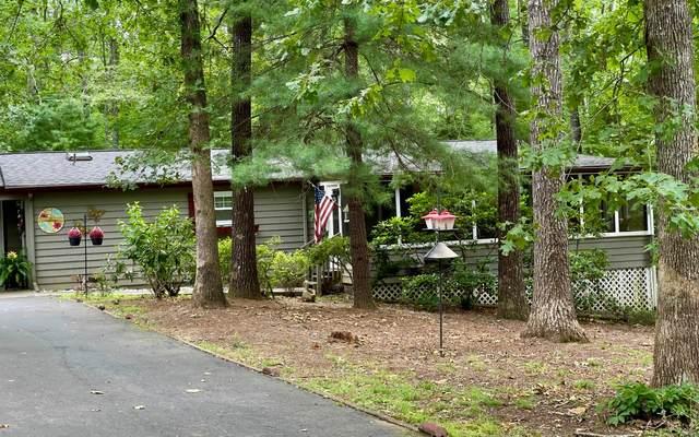 799 Lakeside Drive, Blairsville, GA 30512 (MLS #308612) :: RE/MAX Town & Country