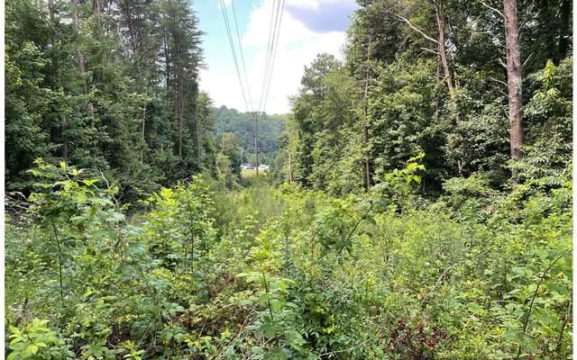 4.38 Cox Creek Rd, Ellijay, GA 30540 (MLS #308792) :: Path & Post Real Estate