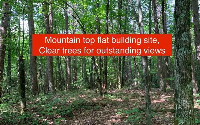 7.41 Ralston Creek Trail, Ellijay, GA 30540 (MLS #308845) :: Path & Post Real Estate