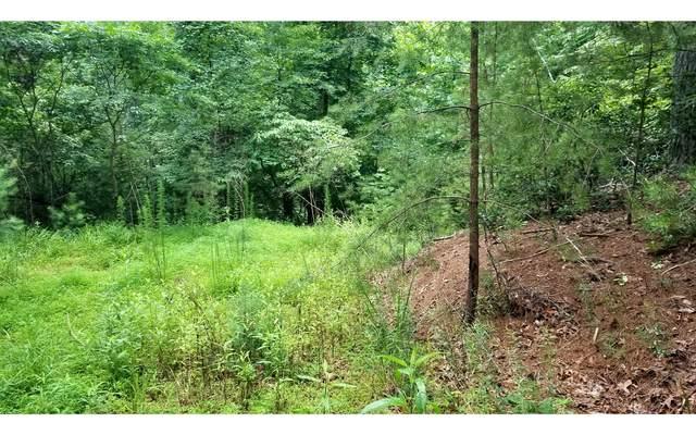 L 247 Weoka Ct, Cherry Log, GA 30522 (MLS #308902) :: Path & Post Real Estate