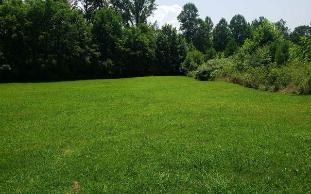 58A Mountain Harbour, Hayesville, NC 29004 (MLS #309015) :: Path & Post Real Estate