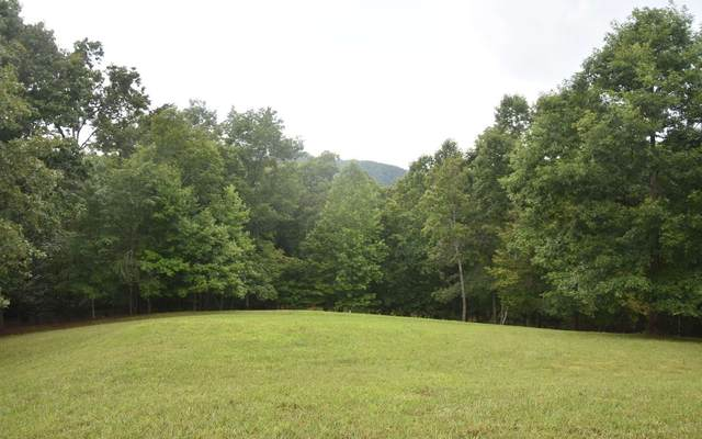 Drake Ridge Lt17, Hayesville, NC 28904 (MLS #309089) :: Path & Post Real Estate