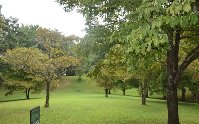 Drake Ridge Dr. Lt 4, Hayesville, NC 28904 (MLS #309092) :: Path & Post Real Estate