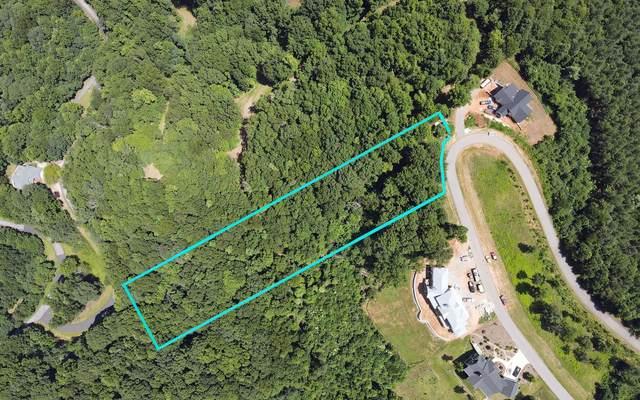 LOT 1 Thirteen Hundred, Blairsville, GA 30512 (MLS #309102) :: Path & Post Real Estate