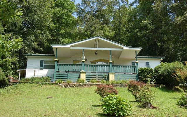 384 Deitz Cable Rd., Warne, NC 28909 (MLS #309113) :: RE/MAX Town & Country