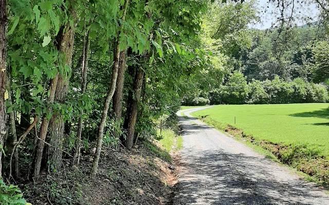 Saffron Lane, Blue Ridge, GA 30513 (MLS #309115) :: Path & Post Real Estate