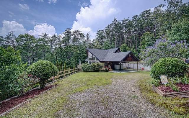 143 Bailey Circle, Mineral Bluff, GA 30559 (MLS #309137) :: Path & Post Real Estate