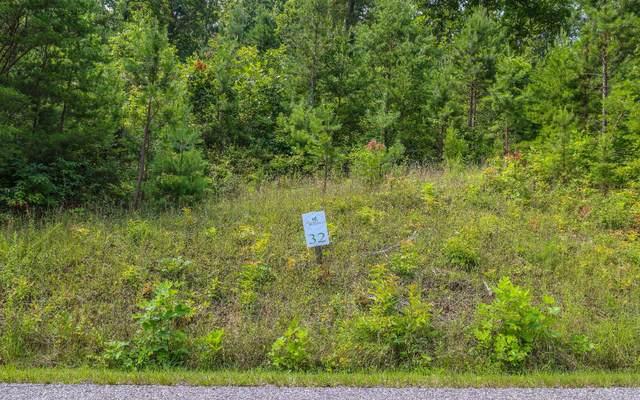 32 Pleasant Meadows, Blairsville, GA 30512 (MLS #309139) :: Path & Post Real Estate
