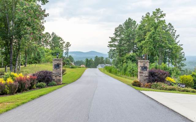 LT268 The Cove @1300, Blairsville, GA 30512 (MLS #309147) :: Path & Post Real Estate