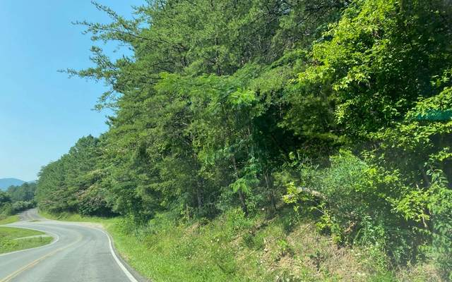 Hwy 68, Ducktown, TN 37326 (MLS #309171) :: RE/MAX Town & Country