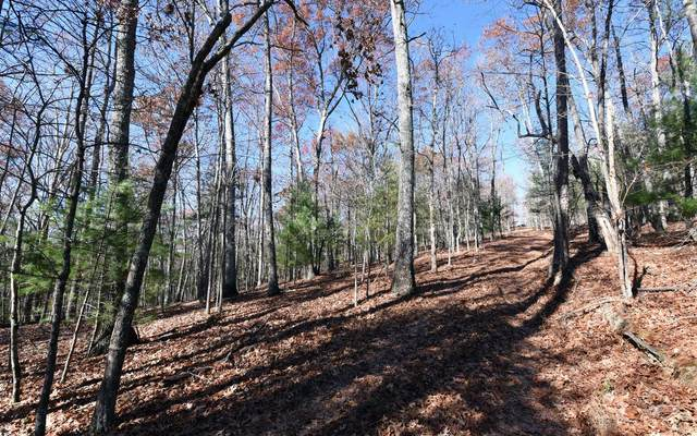 95 Foster Road, Blairsville, GA 30560 (MLS #309199) :: RE/MAX Town & Country