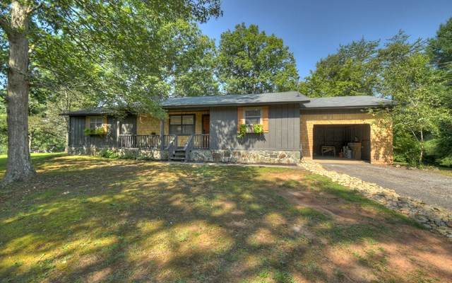 91 River Hills Rd, Mineral Bluff, GA 30559 (MLS #309206) :: RE/MAX Town & Country
