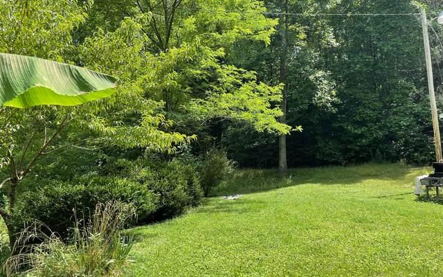428 Garrett Branch Road, Ellijay, GA 30536 (MLS #309213) :: RE/MAX Town & Country