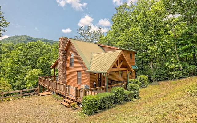 300 Maney Branch Rd, Hiawassee, GA 30546 (MLS #309240) :: RE/MAX Town & Country