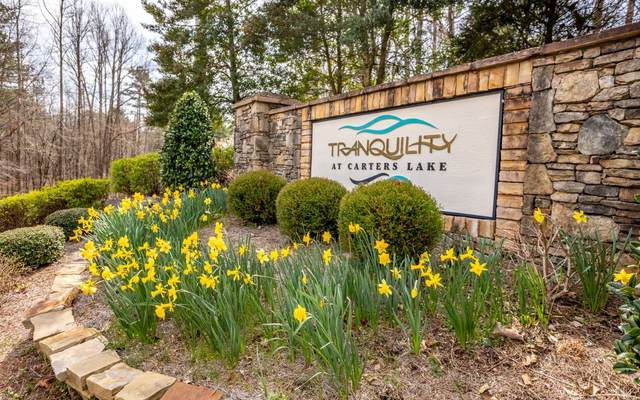 LOT28 Harris Creek Dr, Ellijay, GA 30540 (MLS #309241) :: RE/MAX Town & Country