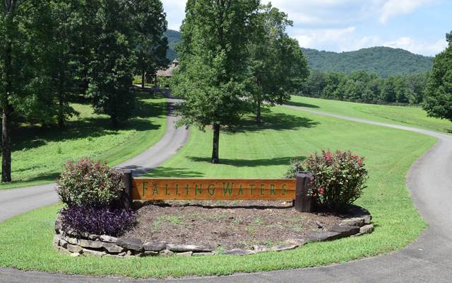 LT 14 Mountain Falls Loop, Ellijay, GA 30536 (MLS #309245) :: RE/MAX Town & Country