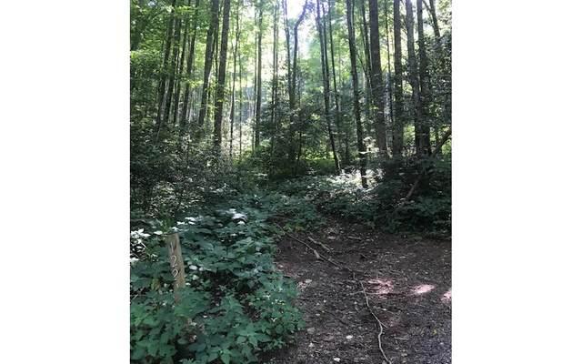 1221 Taylor Trail, Hiawassee, GA 30546 (MLS #309288) :: RE/MAX Town & Country