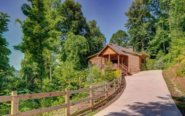 401 Dancing Leaves Trail, Blue Ridge, GA 30513 (MLS #309303) :: RE/MAX Town & Country