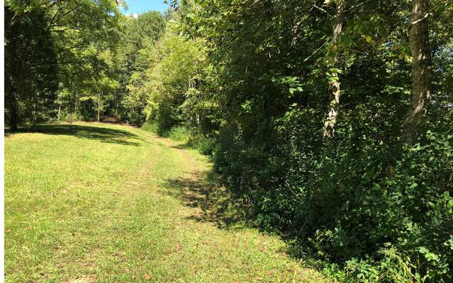 L 31 Trillium Hghts, Hayesville, NC 28904 (MLS #309322) :: RE/MAX Town & Country