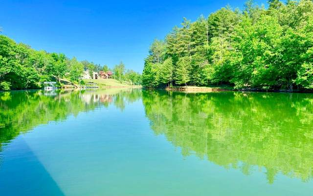 Hill Place, Blairsville, GA 30512 (MLS #309364) :: Path & Post Real Estate
