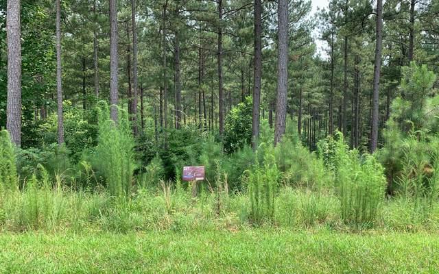 LT267 Thirteen Hundred, Blairsville, GA 30512 (MLS #309459) :: Path & Post Real Estate