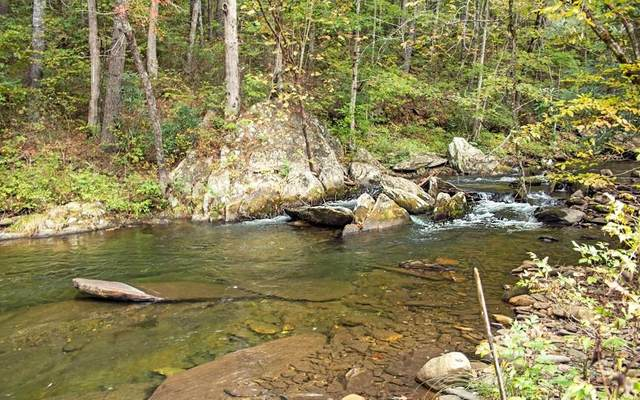 16C Fires Creek Cove, Hayesville, NC 28904 (MLS #309552) :: Path & Post Real Estate