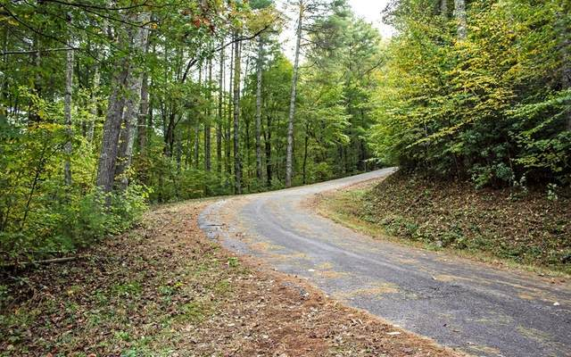 16D Fires Creek Cove, Hayesville, NC 28904 (MLS #309553) :: Path & Post Real Estate