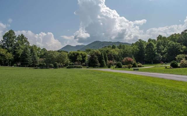 49A Licklog Ridge, Hayesville, NC 28904 (MLS #309642) :: Path & Post Real Estate