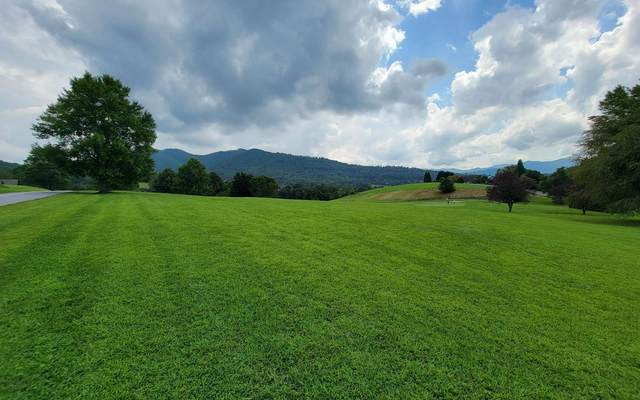 117A Mountain Harbour Dr, Hayesville, NC 28904 (MLS #310084) :: Path & Post Real Estate