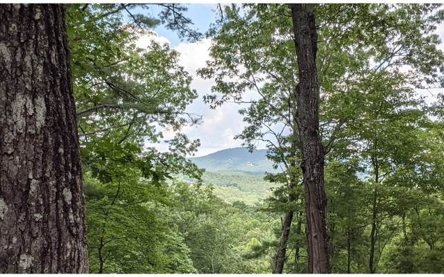 18 Park At Raven Ridge, Mineral Bluff, GA 30559 (MLS #310138) :: RE/MAX Town & Country