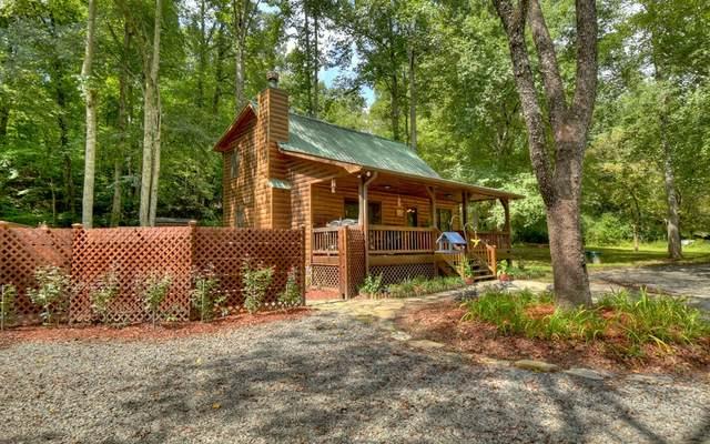 84 Luke Lane, Mineral Bluff, GA 30559 (MLS #310418) :: RE/MAX Town & Country